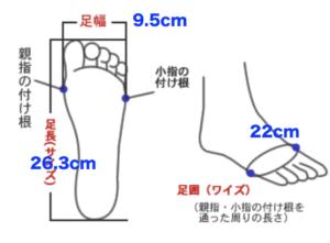 僕の足のサイズ