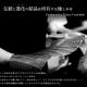 #207 東京クロコダイルのクロコダイル長財布を購入しました
